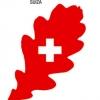 Paisaxe e sustentabilidade na arquitectura contemporánea suíza