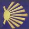 Imaxe icona da cuncha do Camiño de Santiago