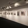 Vista da exposición | Imaxe: Facebook do Museo do Mar de Galicia