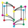 As bibliotecas celebran en novembro o mes da ciencia en galego con actividades para todos os públicos