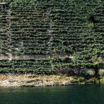Canóns do Sil. Fragmento dunha imaxe de Mani Moretón